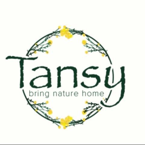 Tansy