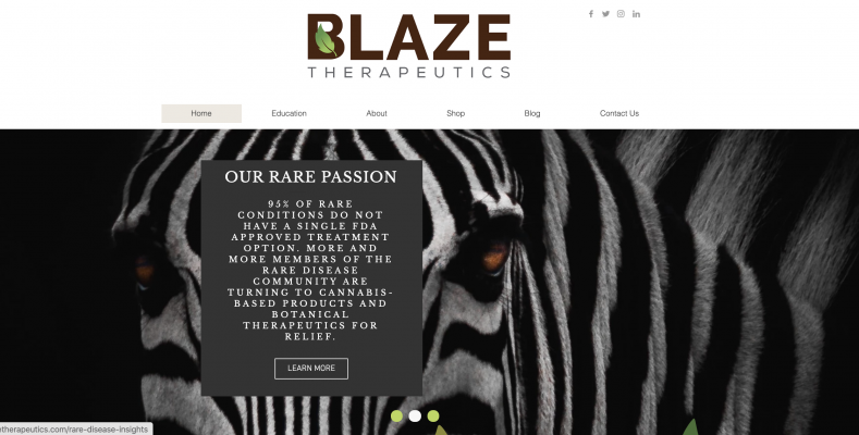 Blaze Therapeutics is dedicated to serving the interests of the rare disease community.