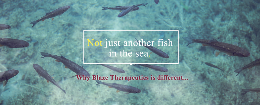Blaze Therapeutics is the ONLY Responsible Distribution company servicing the CBD and other holistic product marketplace.