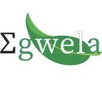 Egwela Shop