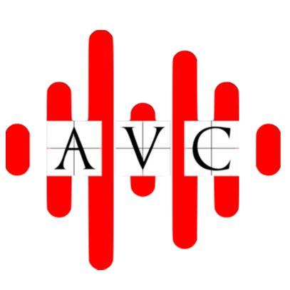 Audio Video Control LLC