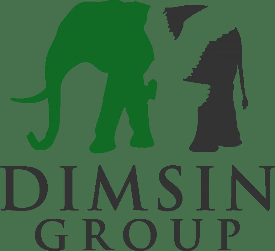 Dimsin Group Logo