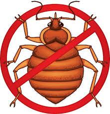 B.B.E. (Bedbug Eradicators)