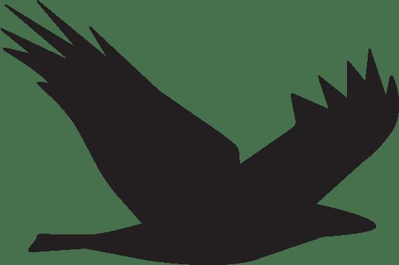 Shidonna Raven