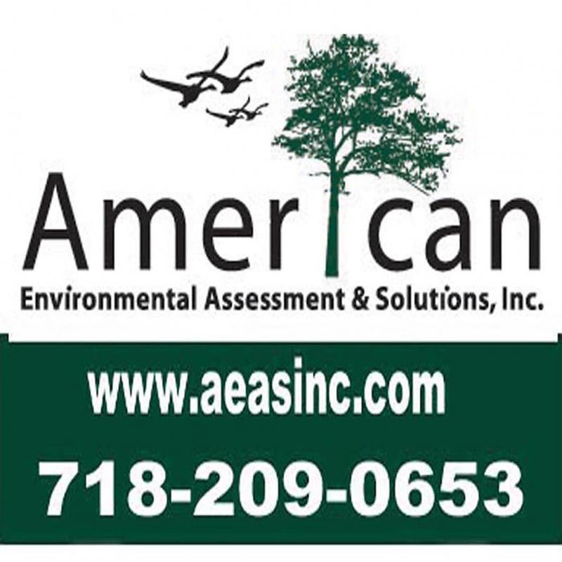 American Environmental Assessment & Solutions, Inc.