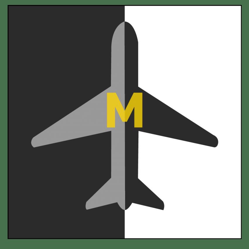 Millennial Travel Group LLC