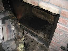 Chimney and Fireplace Inspection and Cleaning